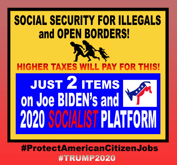 BIDEN - 2 ITEMS ON  BIDEN-DEM  PLATFORM - MEDICARFE FOR ILLEGALS and OPEN BORDERS - JPEG.jpg