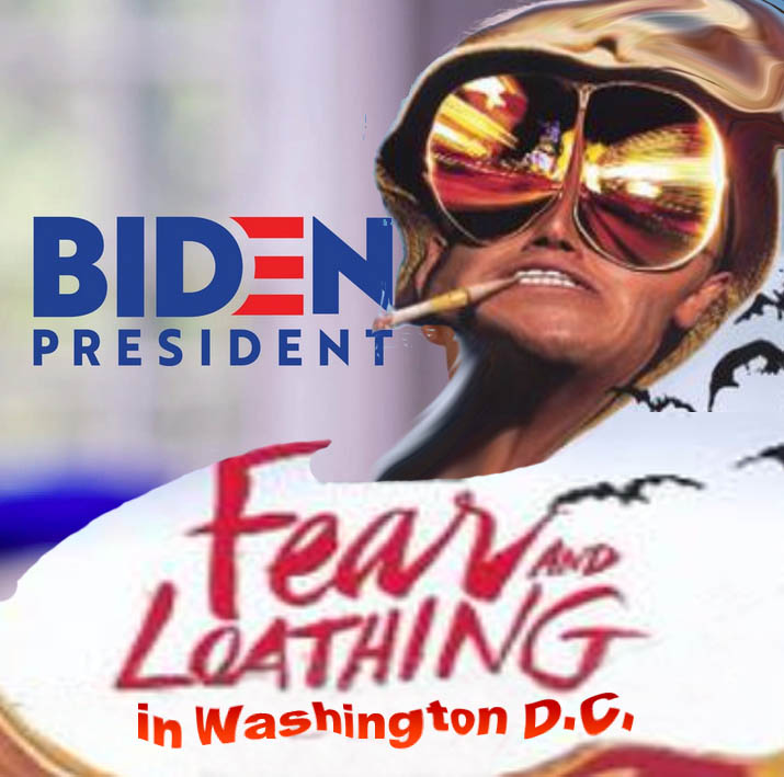 BIDEN - FEAR AND LOATHING IN DC - JPEG.jpg