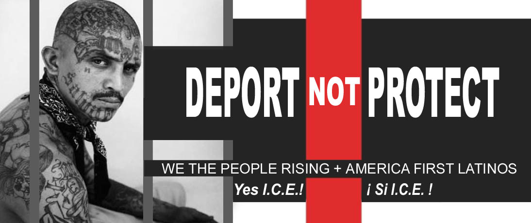 ILLEGALS - DEPORT  NOT  PROTECT  - WE THE PEOPLE RISING - AMERICA FIRST LATINOS - JPEG.jpg