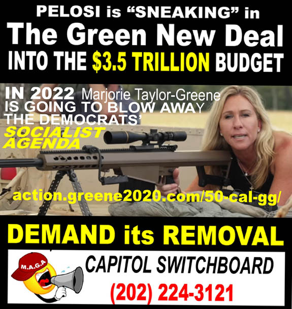 PELOSI - SNEAKING IN GREEN NEW DEAL - INTO $3.5 TRILLION BUDGET - DEMAND REMOVAL - JPEG.jpg